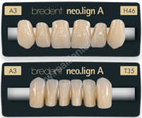 neoligna-anterior_teeth_sample.png